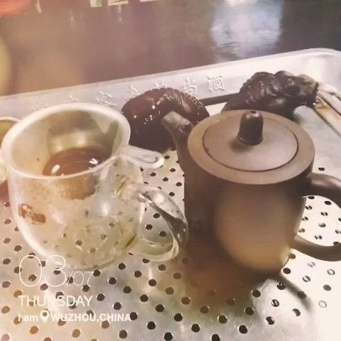 新手泡茶的步骤视频