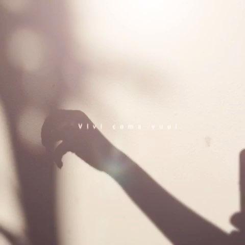 手的影子的舞蹈