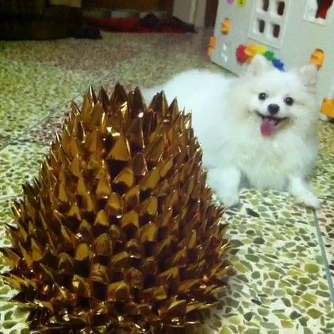 中秋菠萝花折法视频,一手折一手拍视频